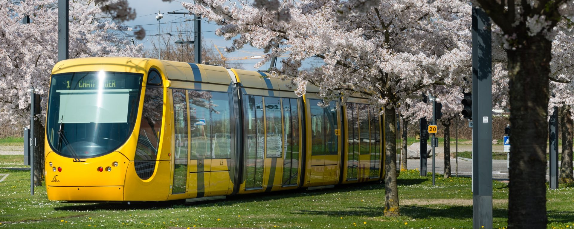 Tramway jaune Transdev Mulhouse réseau transport public transit streetcar yellow mobility company