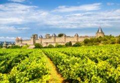 landscape-nature-occitanie-carcassonne