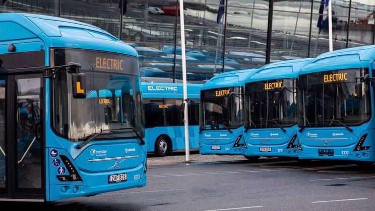 bus-suede