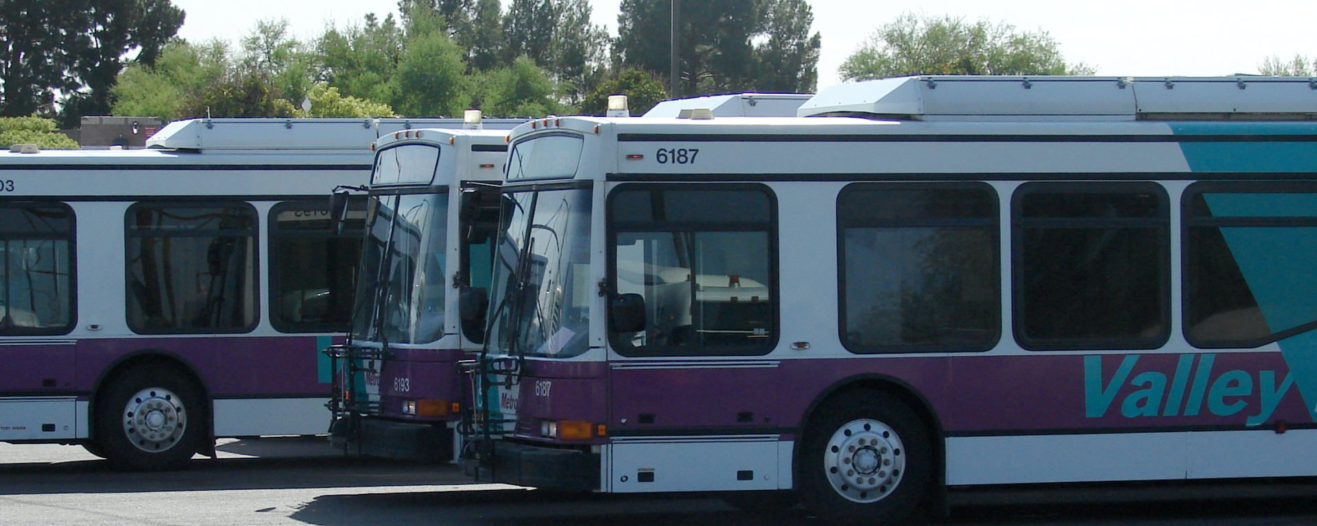 tempe_buses