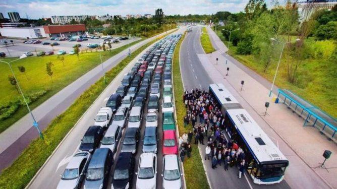 auckland-cars-v-bus-1024x685